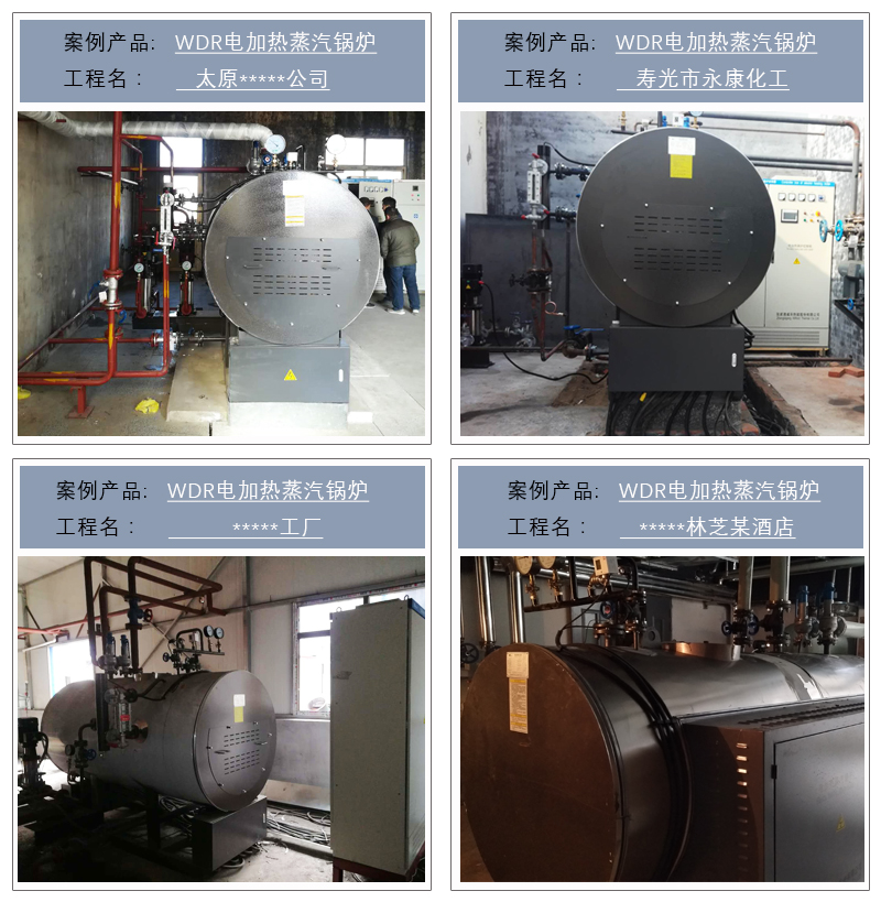 WDR电蒸汽锅炉-2